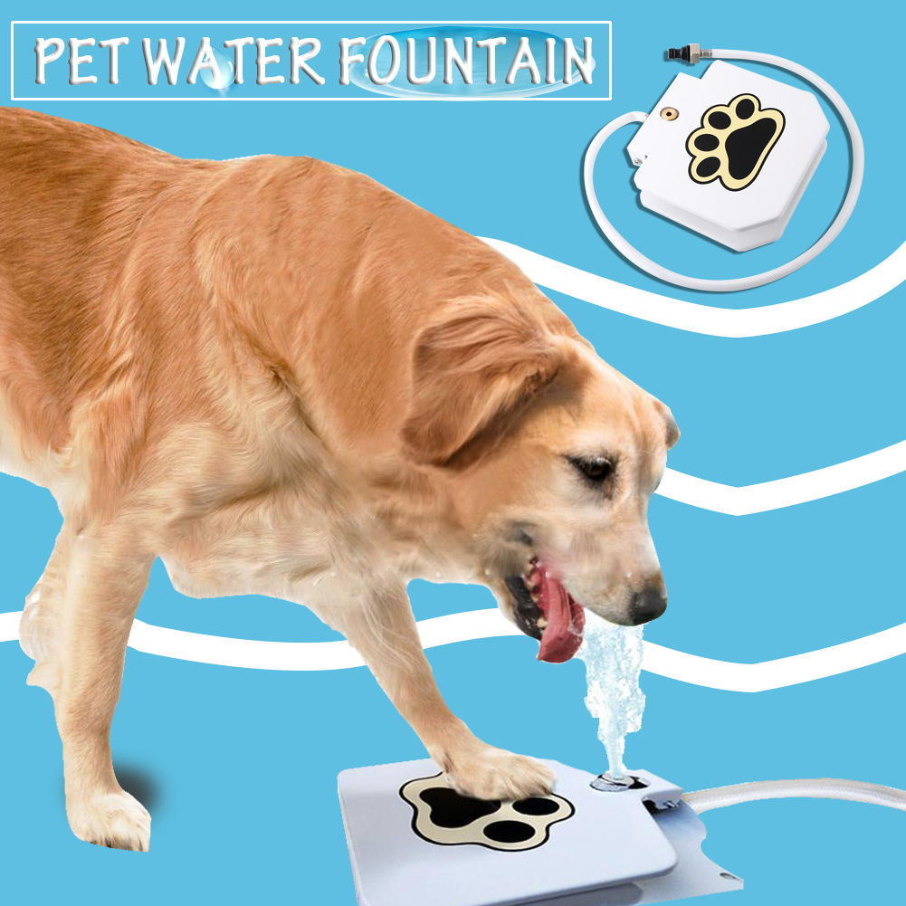 automatic doggie water fountain dog sprinkler dispenser paw step