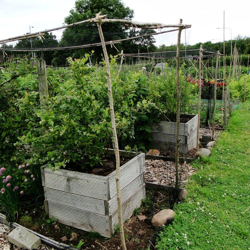 Filet de protection contre les oiseaux filet de jardin - Protection bassin de jardin ...